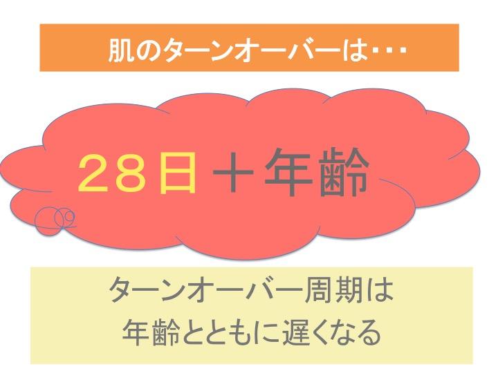 肌のターンオーバーは28日+年齢
