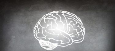 体や髪の毛の事をもっと知ろう!頭のコリは右脳と左脳が関係している!?右脳と左脳の働き!